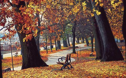 描写秋天的句子50句