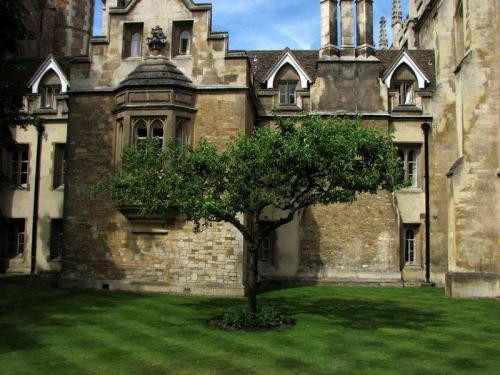 牛頓和蘋果的故事