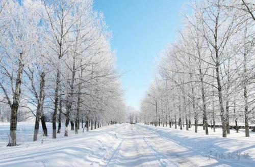 描寫冬天的古詩 20首