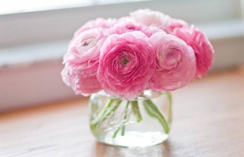 春天美景的句子,桃红柳绿柳暗花明的春日胜景