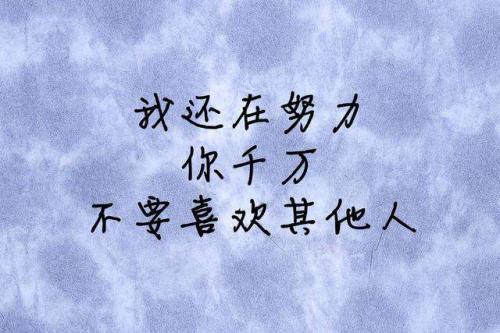 为心爱的人努力的句子