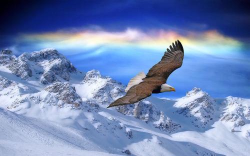 关于金钱的小故事及感悟:放弃安逸的生活,才能找到属于自己的天空