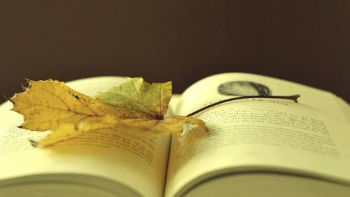 爱读书的名言和诗句50句